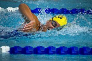 parazwemmen